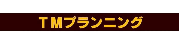 TMプランニング|新潟県新潟市の新築・注文住宅・新築戸建てを手がける工務店